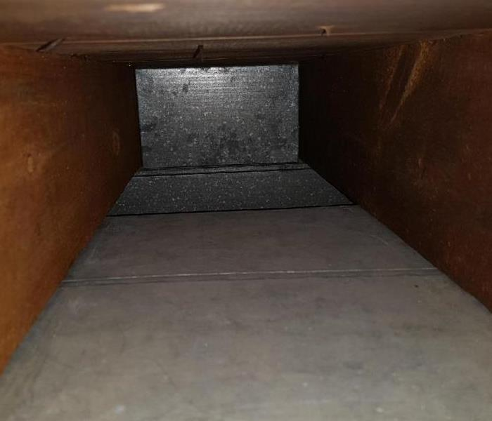 What's Lurking In Your Ducts? After