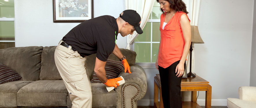 Timmins, ON carpet upholstery cleaning