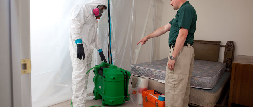 Timmins, ON mold removal process